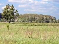 Вид на базу отдыха Костры