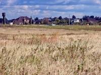 Вид с поля на окраину Титово