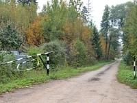 Дорога к СНТ в лесу за Жуково