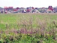 Вид с полей Агрофирмы Подмосковное на деревню Сельцо