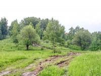 Ближе к Каменному Тяжино пробита по склону вверх дорога к коттеджному поселку Кутузовские Холмы