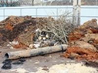 Старые трубы и срубленные деревья - март 2013