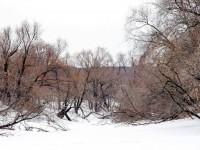 Протока Москва-реки - март 2013