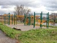Спортивная площака в Большом Саврасово