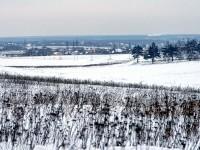 Вид с Боровского кургана в сторону Москвы