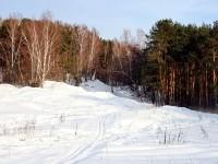 Смешанный лес на склоне Боровского кургана