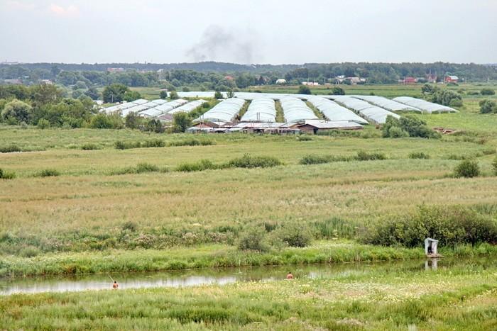 Вид от Михайловской слободы на поля и теплицы китайского колхоза