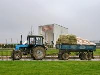 Перевозка корма для лошадей