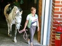 Выход из конюшни