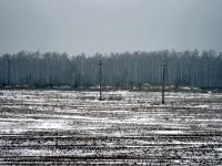 Поле возле Боровского кургана - коттеджный поселок Кутузовские холмы