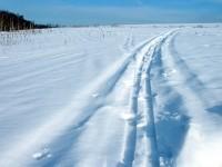 Лыжня на территории поселка