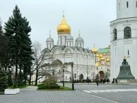 Вид из Тайницкого парка на Архангельский Собор