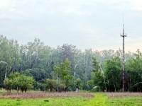 Вышка связи Газпромсвязь на просеке у Прудков