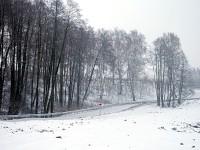 Новая дорога в зону отдыха возле Орлово