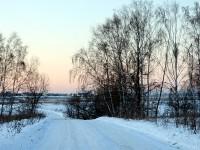 Дорога от лагеря Костры к Володарскому шоссе