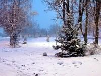 Сквер зимой в поселке Володарского