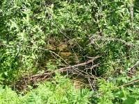 Ручей вдоль территории карьеров РГОК