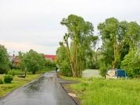 Дорога вдоль прудов - июнь 2013