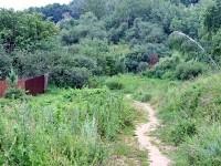 Тропинка к роднику  на холме в Михайловской Слободе