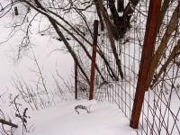 Забор поперек ручья