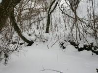 Русло ручья Подцепня