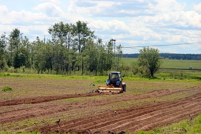 Сельхозработы в поле у Титово