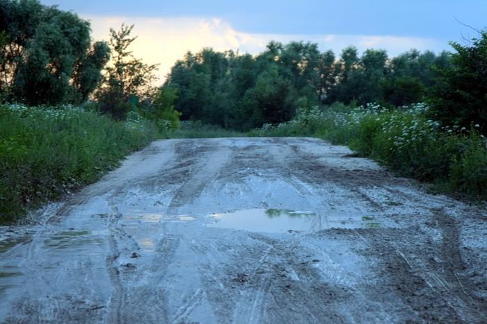 Дорога в Титово после дождя