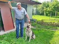 Собака - чемпион