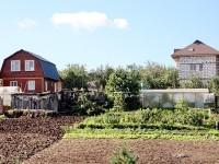 Вид на Титово с берега - дома огороды