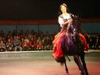 Конное шоу на арене цирка