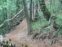 Кленовая тропа - часть велотрассы