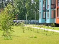 Озеленение придомовой территории первого сданного корпуса