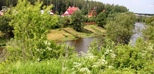 Pahra-v-rajone-derevni-Grigorchikovo