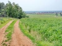 Вид с Чулковских высот на Чулково Клаб