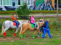 У школы лошадей водили