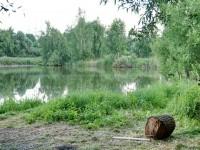 Большой пруд в селе Еганово