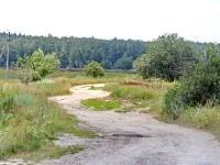 Дорога от Какузево в пос. РАОС