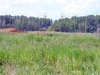 Вид от нефтепровода на пос. Володарского - видны краны Ольховки