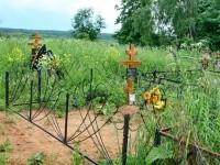 Вид с кладбища в сторону Михайловской Слободы