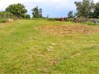 Окошенная часть кладбища в Еганово