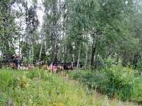 Кладбище на границе Чулковского и Софьинского поселения