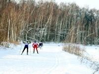 Лыжники на спуске