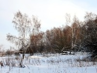 Чулковская природа