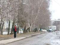Улица в Молоково