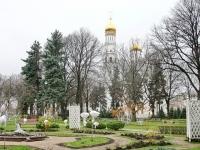 Вид из Тайницкого парка на колокольню Иван Великий