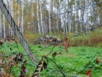 За проволокой - территория базы Костры