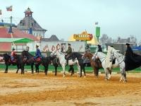 Участники реконструкции истории русской кавалерии