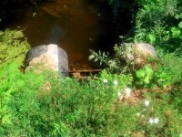 Новая плотина на пруду - август 2013