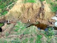 У пешего перелаза через ручей Подцепня