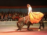 Сеньора укрощает лошадь